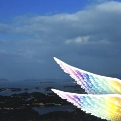 「光る翼」