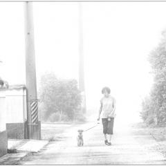 「霧中散歩」